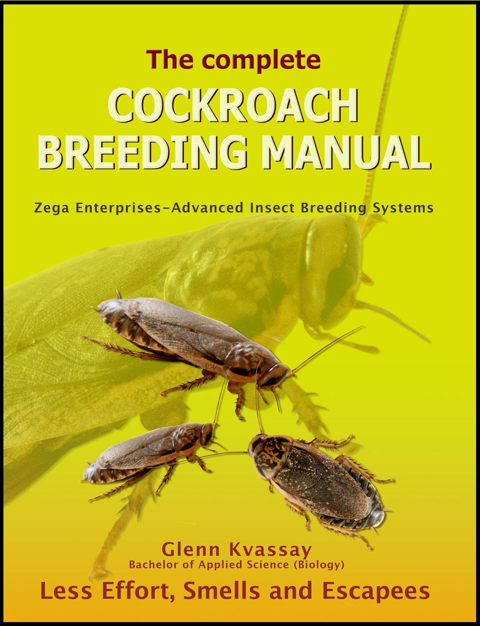CKBM-final cockroach book-thumbnail