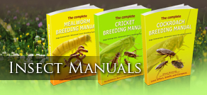 Insect Manual tab